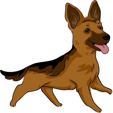 Illustration Featuring a German Shepherd illustration