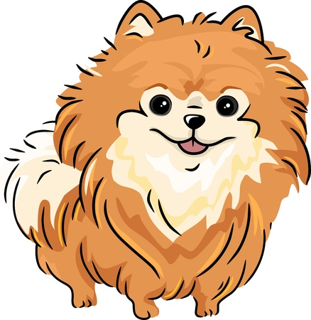 Illustration Featuring a Pomeranian illustration