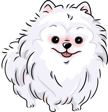 lap dog: Illustration Featuring a White Pomeranian