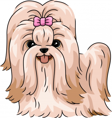 pet grooming: Illustration Featuring a Shih Tzu Stock Photo