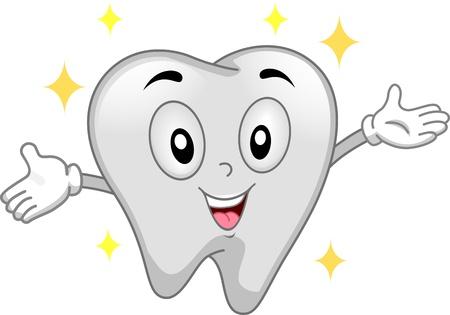 dientes caricatura: Mascota ilustraci�n que ofrece un diente brillante Foto de archivo