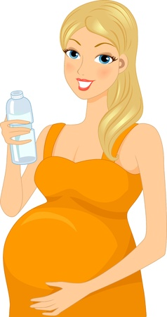 Illustration of a Pregnant Woman Drinking Bottled Water Stock Illustration - 15067791
