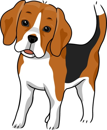 Illustration Featuring a Cute and Curious Beagle illustration