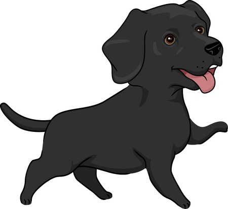 guide dog: Illustration Featuring a Cute and Playful Black Labrador Retriever