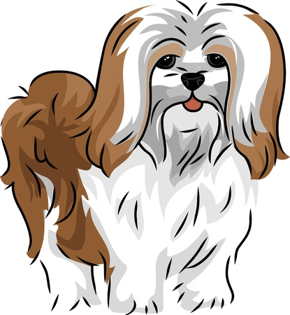 pet breeding: Illustration Featuring a Cute and Playful Lhasa Apso
