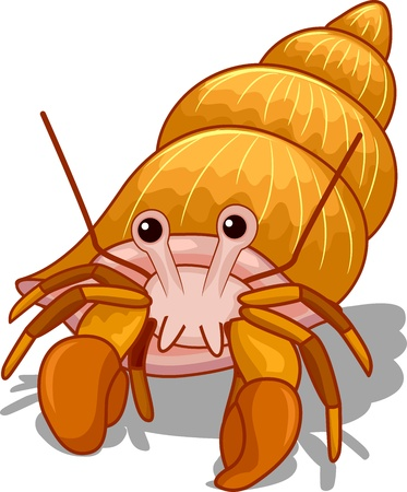 Illustration of a Golden Hermit Crab with its Head Exposed