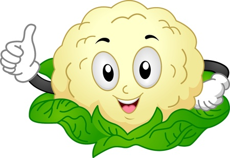 cartoon vegetable: Mascot Illustration of a Cauliflower Giving a Thumbs Up