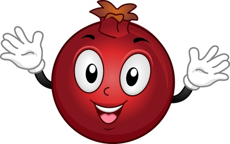 Mascot Illustration Featuring a Pomegranate with its Arms Spread Wide illustration
