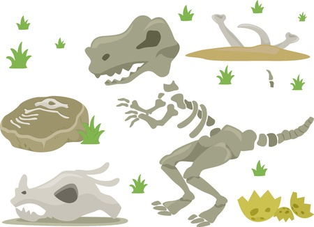 Illustration of Different Kinds of Dinosaur Bones with Grasses illustration