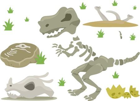 grasses: Illustration of Different Kinds of Dinosaur Bones with Grasses
