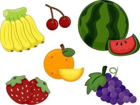 Ilustraci�n de los diferentes tipos de frutas Foto de archivo - 16840177
