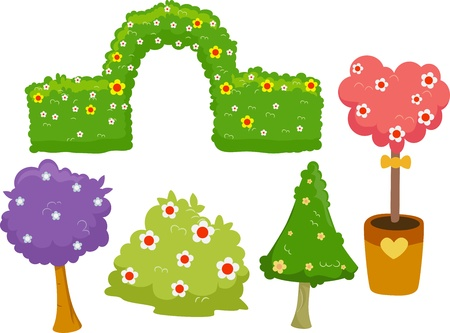 topiary: Illustration of Different Garden Hedges, Trees and Bushes