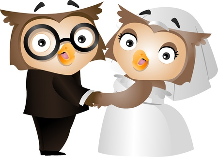 Illustration of a Bride and Groom Owl on their Wedding illustration