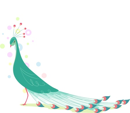 Illustration of Peacock Background illustration
