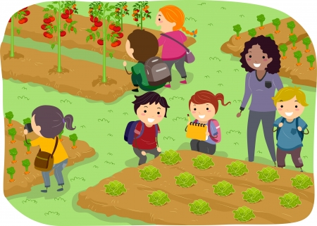 Illustration of Stickman Kids School Trip to a Vegetable Garden illustration
