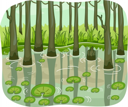 swamp: Illustration of a Swamp with Lotus Leaves Floating Around Stock Photo