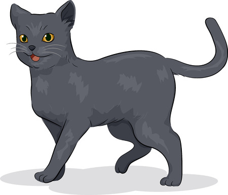 grey cat: Illustration of a Cute Russian Blue Cat Stock Photo