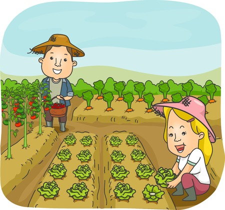 Illustration of a Man and a Woman Harvesting Fruits and Vegetables from Their Garden illustration
