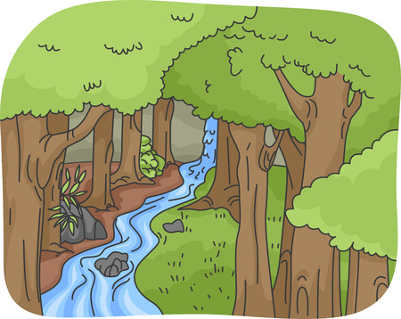 waterfall in forest: Illustration Featuring a Rainforest with a Gently Cascading Waterfall