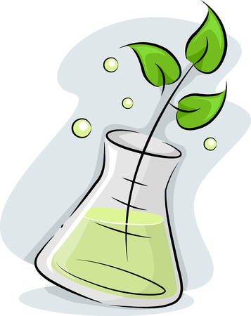 erlenmeyer: Illustration Featuring a Plant Stalk Soaking in an Erlenmeyer Flask Stock Photo