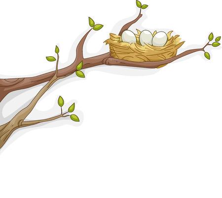 pajaro caricatura: Ilustración con nido de descanso de un pájaro en una rama de árbol
