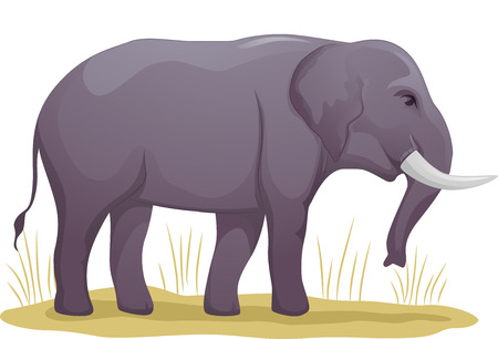 dry grass: Illustration Featuring an Elephant Standing on a Patch of Dry Grass