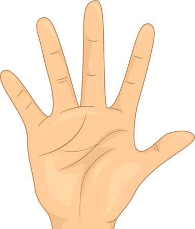manos abiertas: Ilustraci�n con una palma abierta que gesticula el n�mero cinco