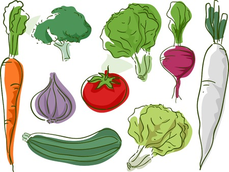 Sketchy Illustration Featuring Different Types of Vegetables Vector