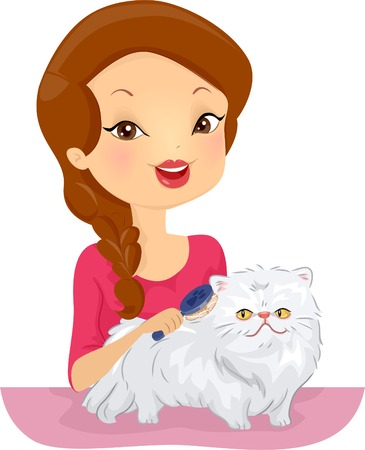 cat grooming: Illustration of a Woman Grooming a Persian Cat
