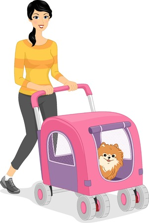 dog walking: Illustration of a Woman Walking Her Dog in a Stroller