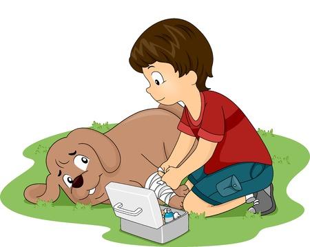 Ilustración de un Little Boy se apliquen las medidas de primeros auxilios en su perro Vectores