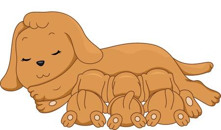 lactancia materna: Ilustraci�n de un perro femenino Amamantar a sus perritos Vectores