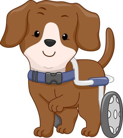 dog wheelchair: Illustration of a Handicapped Dog Attached to a Wheelchair