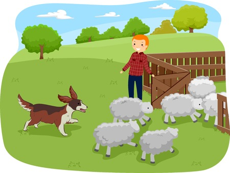 herding: Illustration of a Shepherd Dog Herding Shop While Being Watched