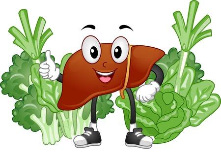 マスコット図は野菜に囲まれて健康な肝臓の特徴  イラスト・ベクター素材