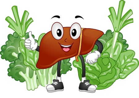 hepatology: Mascot Illustration Featuring a Healthy Liver Surrounded by Vegetables