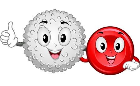 globulos blancos: Ilustración Mascota Con una célula de sangre blanca y una célula de sangre roja que cuelga Juntos