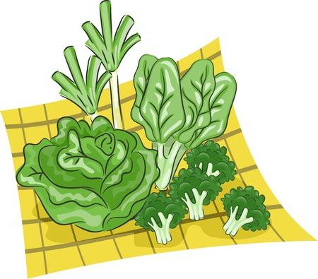 verduras verdes: Ilustraci�n que ofrece un grupo de verduras verdes Vectores
