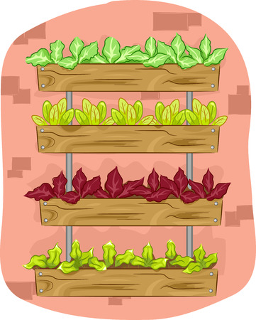vertical garden: Illustration Featuring a Vertical Garden Composed of Ornamental Plants