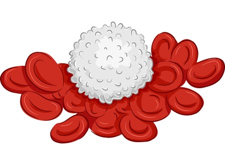 hematology: Illustration Featuring a Group of Red and White Blood Cells