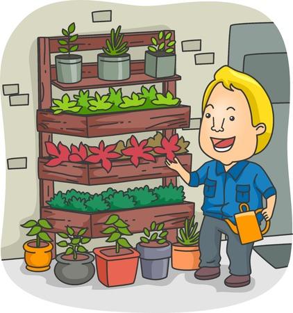 indoor garden: Illustration of a Man Tending to His Vertical Garden Illustration