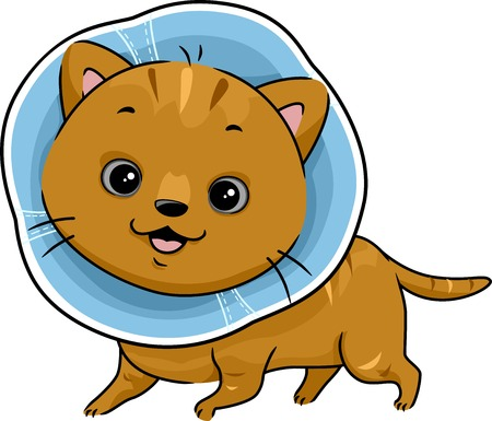 cat clipart: Illustration Featuring a Cat Wearing a Cat Collar