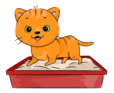 Illustration Featuring a Cat Walking All Over its Litter Box Vector