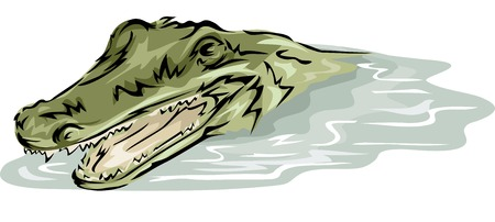 submerged: Illustration Featuring a Crocodile Partly Submerged in Water Illustration