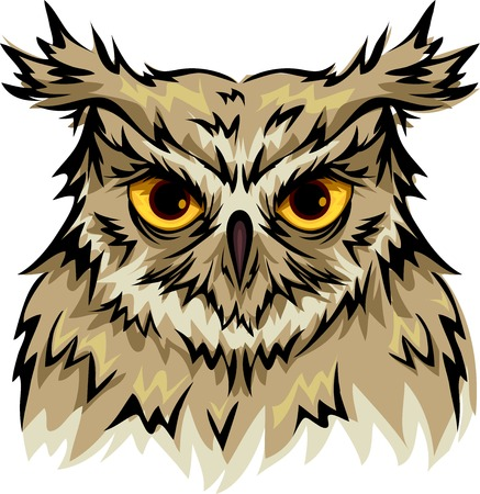 piercing: Illustration Featuring an Owl with Piercing Eyes