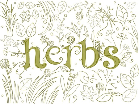 herb: Doodle Illustration Featuring Different Herbs