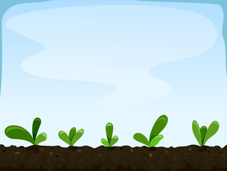 Illustration Featuring Seedlings Planted Inches Apart  Illustration
