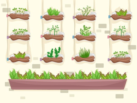 vertical garden: Illustration Featuring a Vertical Garden Making Use of Recycled Materials Illustration
