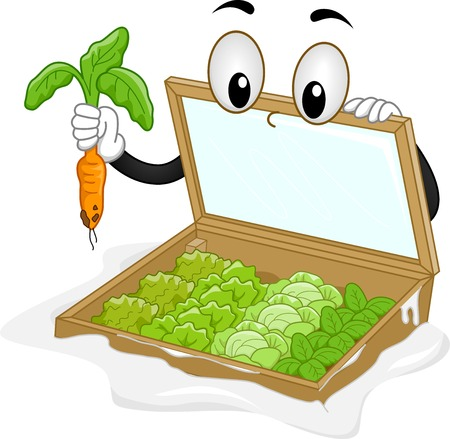 plucking: Mascot Illustration Featuring a Cold Frame Plucking a Carrot Illustration