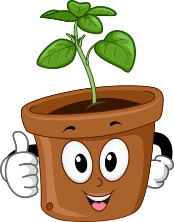 basil's: Mascot Illustration Featuring a Potted Basil Plant Giving a Thumbs Up Illustration
